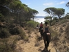 Horse riders walking down the gorge to the beach at Barbate