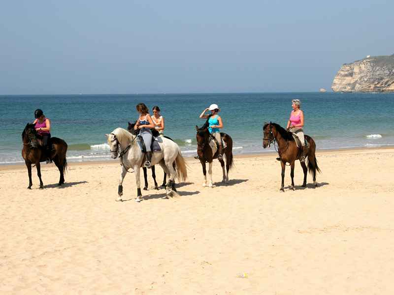 Horses being ridden on the beach