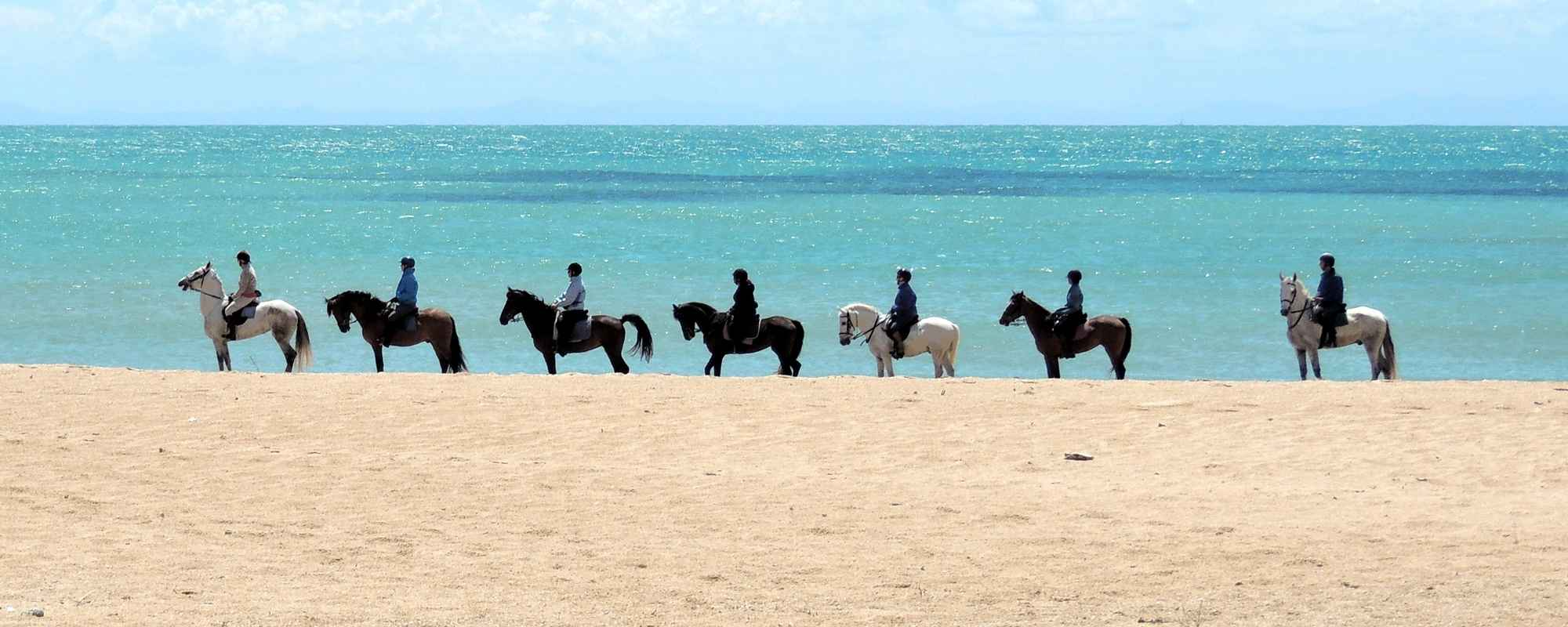 Horse riding holiday in unspoilt Andalusia for proficient riders.
