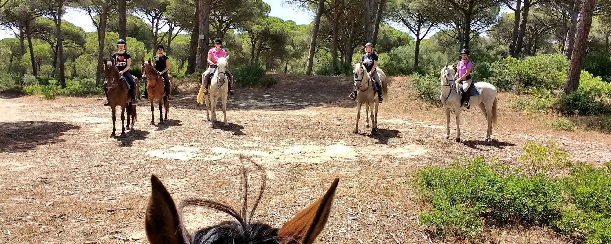 Horse riding holidays with lovely views