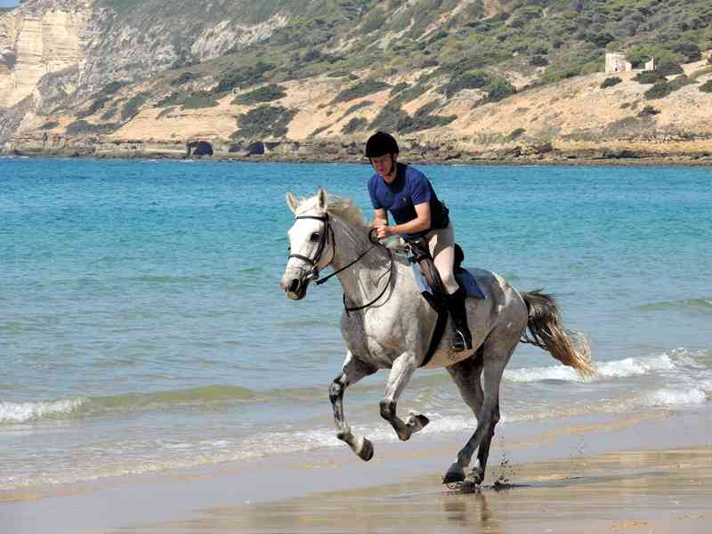 A beach canter on our horse riding short break