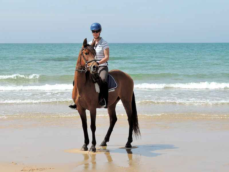 Riding one of our horses on the Beach