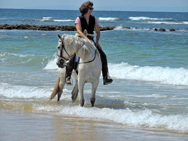 Riding a horse through the waves