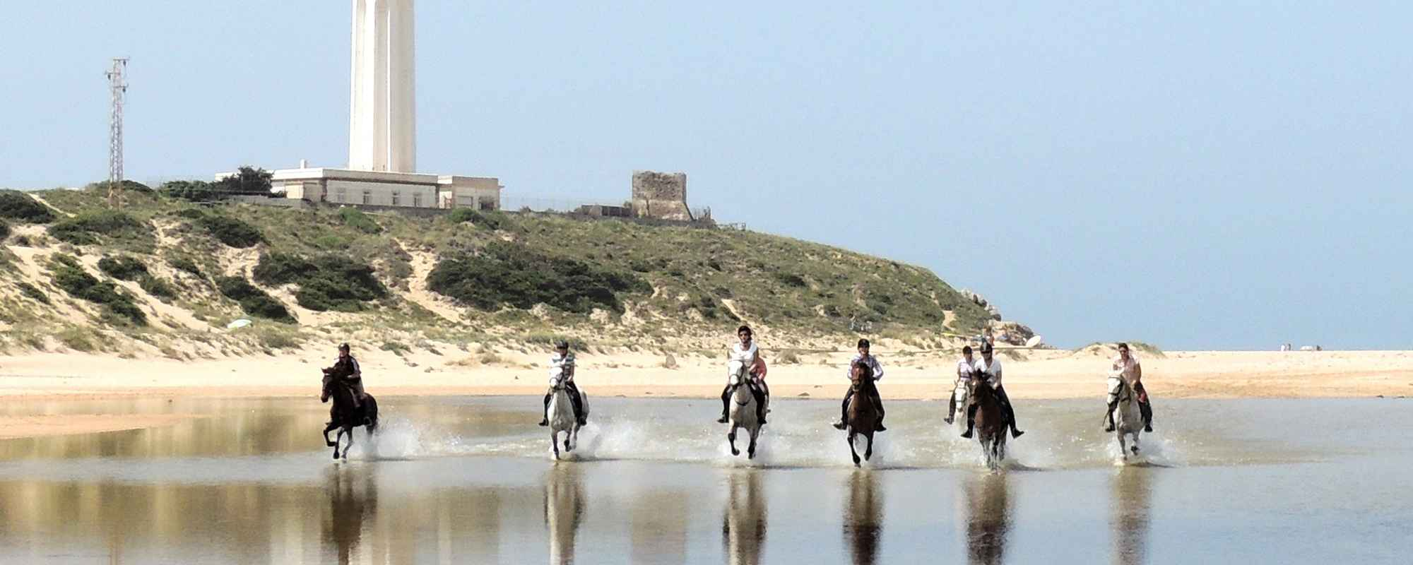 Horses cantering across Cape Trafalgar on our horse riding holiday.