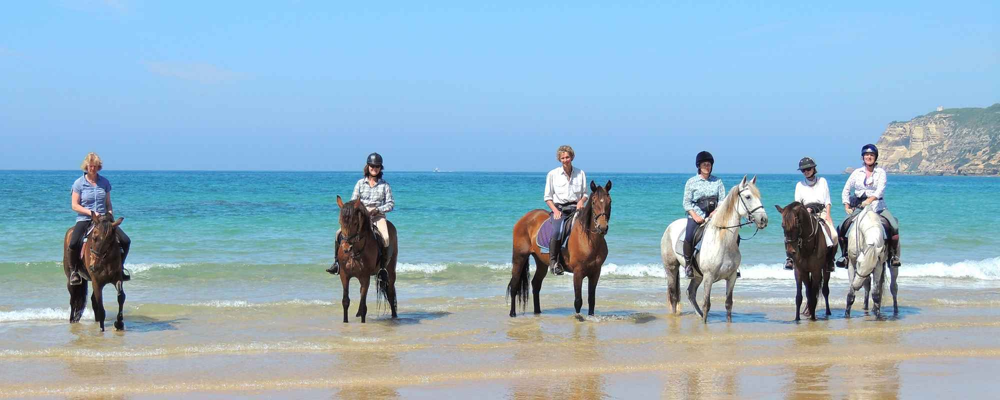 Fantastic beach horse riding
