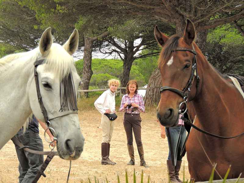 Horses and guests at rest stop on one of our horse riding trails