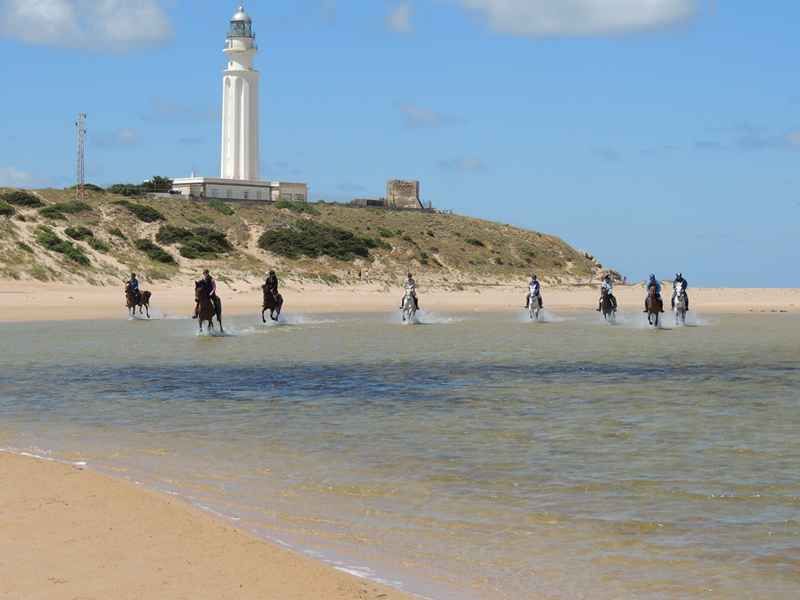 Riding horses on Cape Trafalgar on our horseback vacation