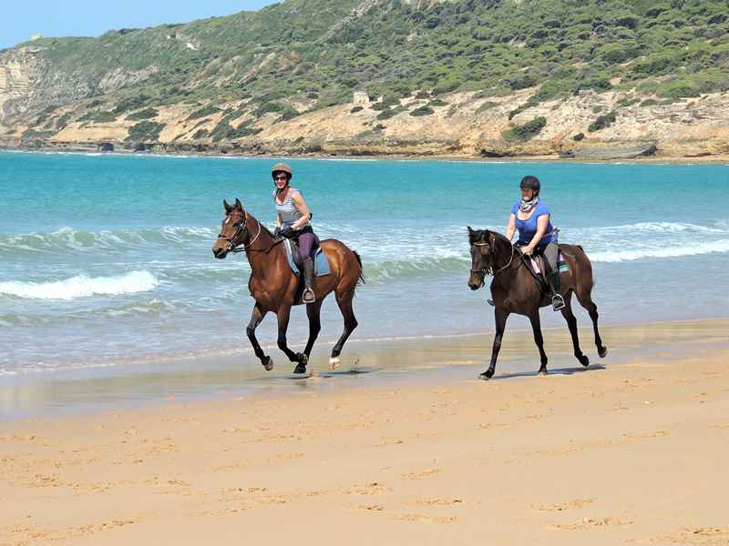 Horses cantering on the beach on our equestrian vacation