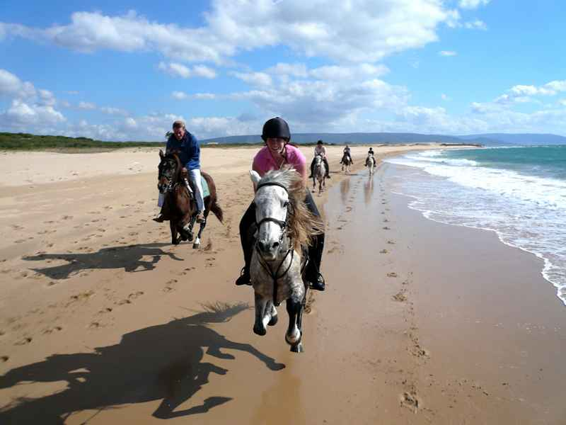 A beach gallop on our equestrian holidays
