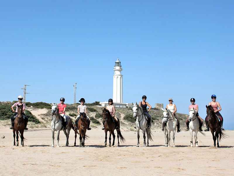 Horses on Cape Trafalgar on our horse riding vacation