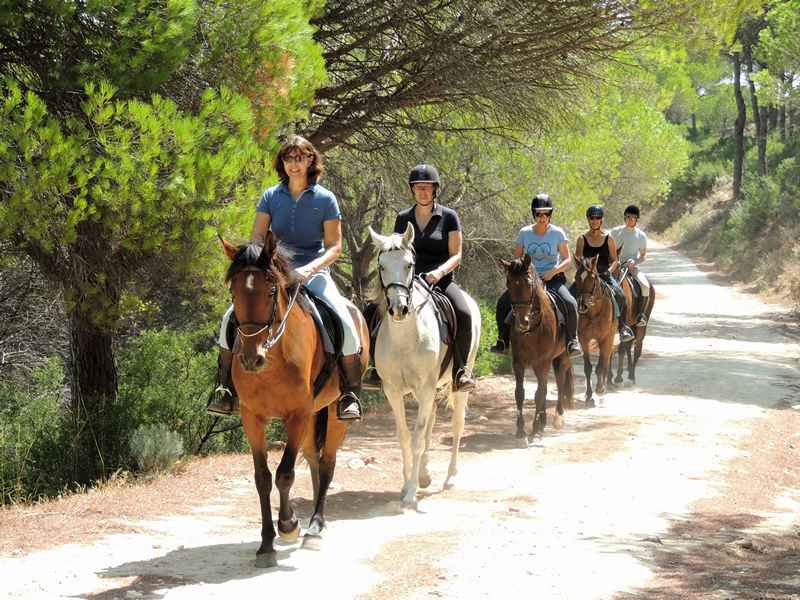 Horse riding through the forest on our horse riding vacation
