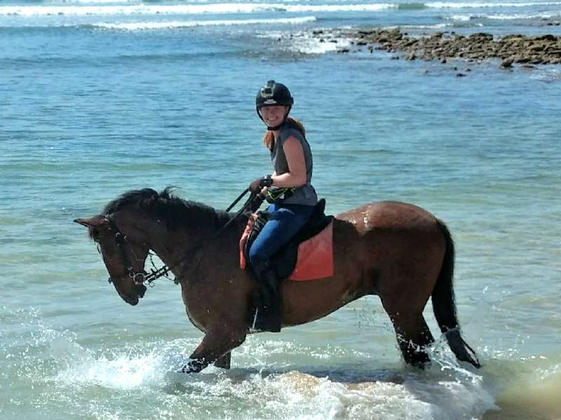 Playing in the sea on our horse riding short break